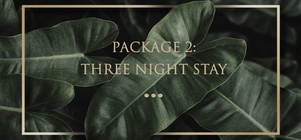 PACKAGE 2: THREE NIGHT STAY